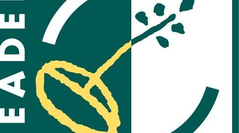 logo leader cambrésis